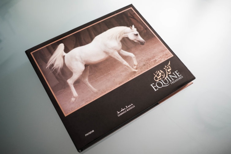 Equine Treasures